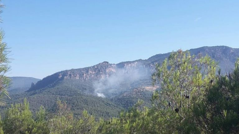 Extinguido el incendio forestal en Yeste